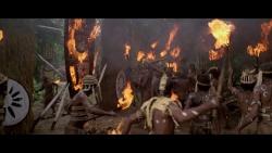 Il fiume del grande caimano (1979) BD-Untouched 1080p AVC DTS HD iTA AC3 iTA-ENG