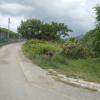 Hiking Tin Shui Wai - 頁 14 ITxw4cyf_t