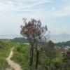Hiking Tin Shui Wai - 頁 14 BwvXsUmu_t