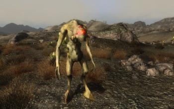 Fallout Screenshots XIII - Page 5 H8UilEh1_t
