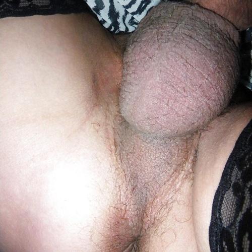 Free dirty panties pics
