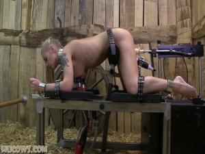 Darina - Double Stimulation - BDSM, Punishment, Bondage
