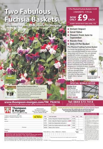 Amateur Gardening - 28 March (2020) 1
