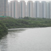 Hiking Tin Shui Wai - 頁 19 M68rO7vC_t