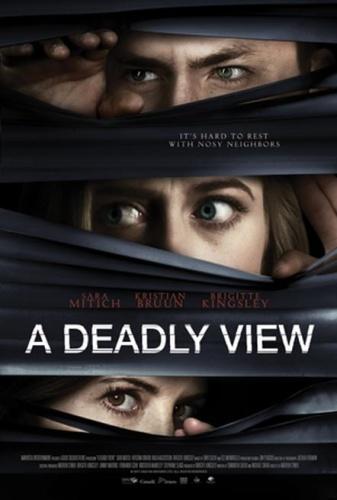 A Deadly View 2018 1080p WEBRip x264-RARBG