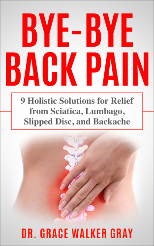 Bye-Bye Back Pain 9 Holistic Solutions for Relief from Sciatica Lumbago Slipped Disc and Backache