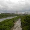 Hiking Tin Shui Wai - 頁 14 Lcco9SGZ_t