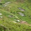 Hiking Tin Shui Wai - 頁 14 E5jkGO1l_t