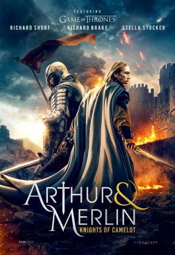 Arthur And Merlin Knights Of Camelot 2020 HDRip XviD AC3-EVO