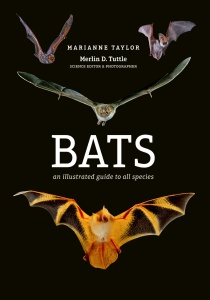 Bats An illustrated guide to all species