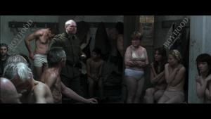 Auschwitz 2011