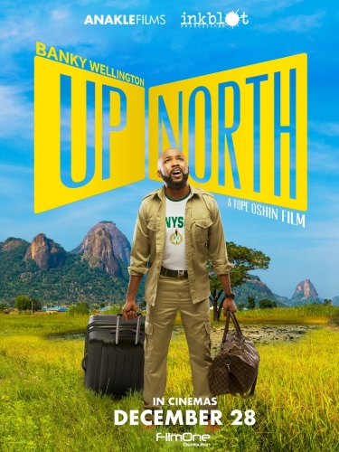 Up North 2018 WEBRip XviD MP3-XVID