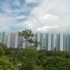 Hiking Tin Shui Wai - 頁 14 VZkSIRzu_t