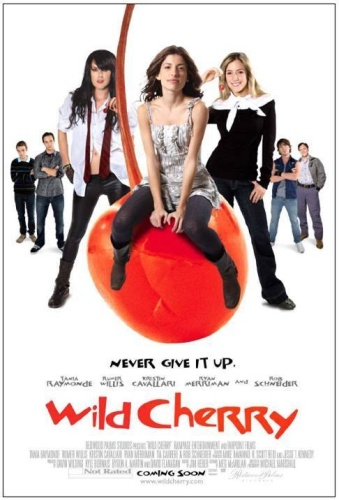 Wild Cherry 2009 1080p BluRay x264 DTS-FGT