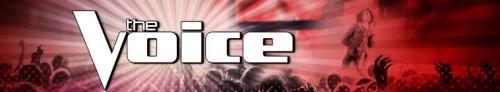 The Voice S17E25 Live Finale Part 1 720p HULU WEB-DL AAC2 0 H 264-AJP69