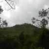 Hiking Tin Shui Wai - 頁 14 GkALupiL_t