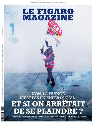 Le Figaro Magazine - 13 12 (2019)