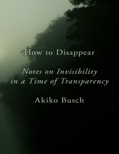 How to Disappear Notes on Invisibility by Akiko Busch