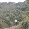 Hiking Tin Shui Wai - 頁 14 1PGoeclR_t