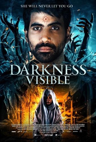 Darkness Visible 2019 1080p AMZN WEBRip DDP5 1 x264 NTG