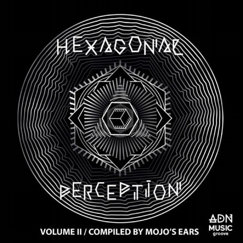 VA   Hexagonal Perception, Vol 2 (2020)