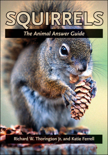 Squirrels   The Animal Answer Guide