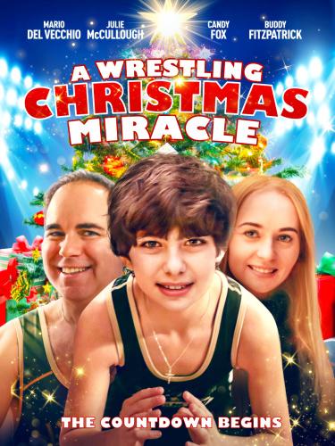 A Wrestling Christmas Miracle 2020 HDRip XviD AC3-EVO