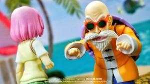 Dragon Ball - S.H. Figuarts (Bandai) NlzkOUSO_t