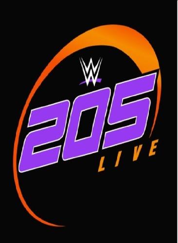 WWE 205 Live 2019 11 15 1080p  h264-HEEL