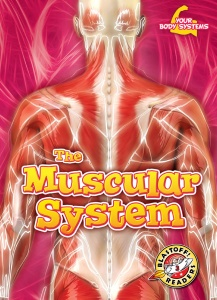 The Muscular System (Your Body Systems- Blastoff! Readers, Level 3)