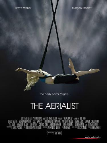 The Aerialist 2020 HDRip XviD AC3-EVO