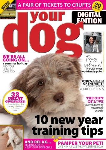 Your Dog - February (2020)