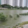 Hiking Tin Shui Wai - 頁 14 OrOBcSYh_t
