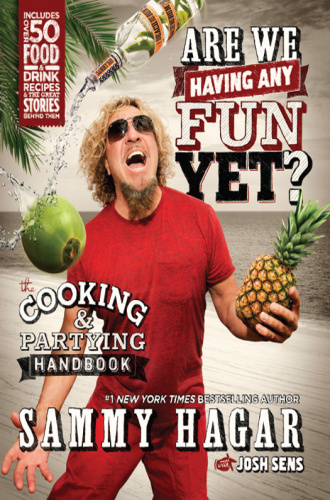 Are We Having Any Fun Yet   The Cooking & Partying Handbook