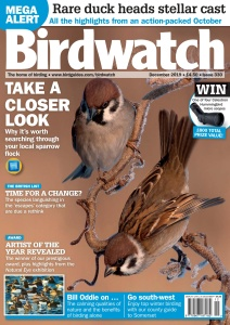 Birdwatch UK - December (2019)
