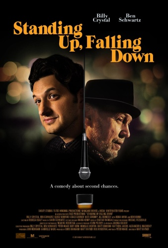 Standing Up Falling Down 2019 720p WEB-DL XviD AC3-FGT