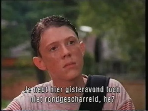 The Paperboy 1994