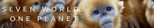 Seven Worlds One Planet S01E06 720p HDTV x264-QPEL