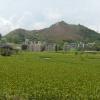 Hiking Tin Shui Wai - 頁 14 WcVl40tL_t