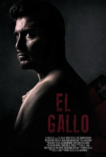 El Gallo 2018 WEB-DL x264-FGT