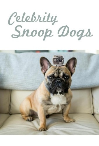 Celebrity Snoop Dogs S01E02 720p HDTV x264-CBFM