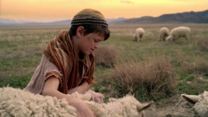 No Ordinary Shepherd 2014