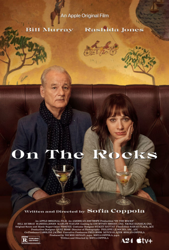 On The Rocks 2020 1080p WEB-DL H264 AC3-EVO