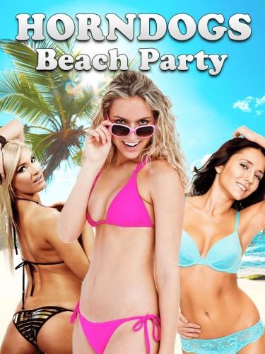 Beach Babe Bingo 2018 1080p AMZN WEBRip DDP2 0 x264-TrollHD