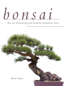 Bonsai - The Art of Growing and Keeping Miniature Trees