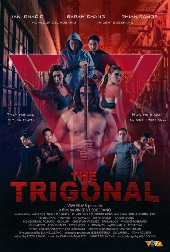 The Trigonal Fight For Justice 2018 WEB-DL XviD MP3-FGT