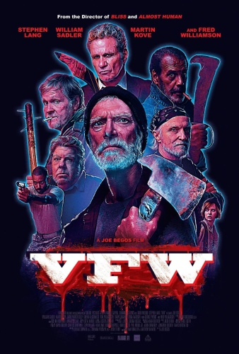 VFW 2019 HDRip XviD AC3-EVO