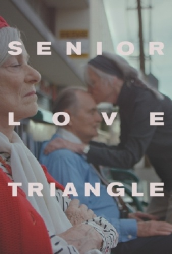 Senior Love Triangle 2019 HDRip XviD AC3-EVO