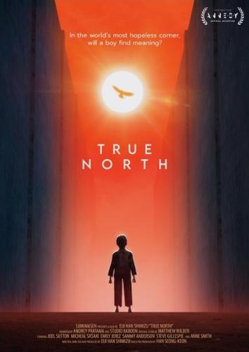 True North 2020 WEB h264-RedBlade