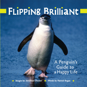 Flipping Brilliant A Penguin's Guide to a Happy Life